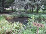 20080913_nogawa_14.JPG